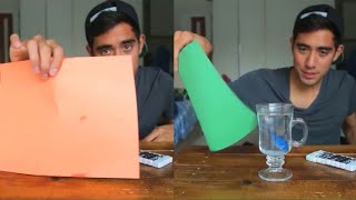 Zach King Change The Fish Color | Magic Tricks Video 2020 | Funny Magic Vines