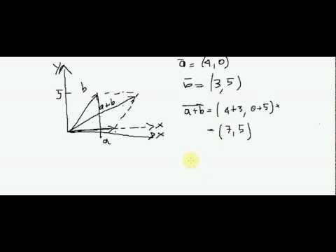Fisica - Lezione 02 - Somma Vettoriale - Tutorial di Fisica