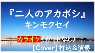 キンモクセイ『二人のアカボシ』カラオケ 【Cover】打込(Cubase)&演奏(E...
