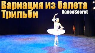 Вариация из балета Трильби. Балет для всех желающих.