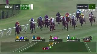 Vidéo de la course PMU PREMIO INDIGO BOY