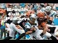 Bengals lose 1st game of season vs. Panthers