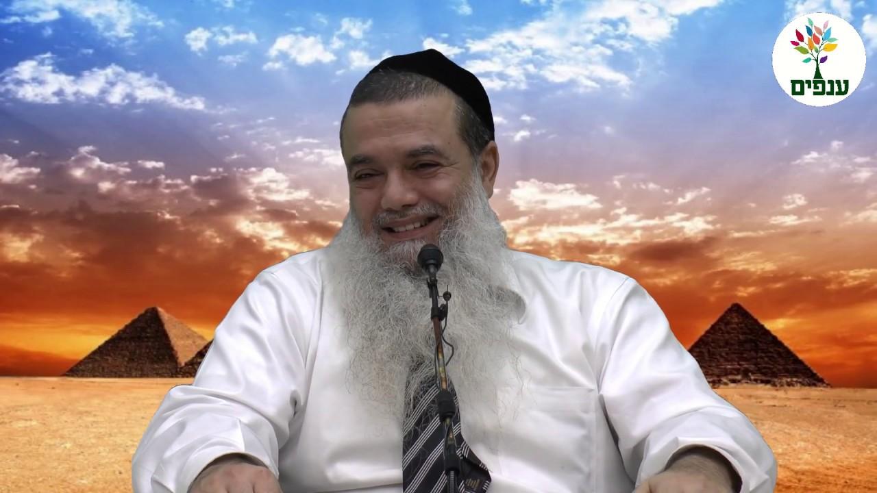 פרשת ויחי - הרב יגאל כהן HD - סדרה חדשה!