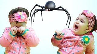 Celina and Hasouna Run away from Spider - سيلينا وحسونة والعنكبوت