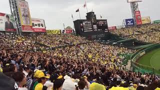 6月10日レフトスタンドから。 阪神ファンですが、パリーグではロッテの...