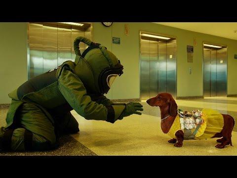 【プレゼント】犬も歩けば不幸にあたる!?『トッド・ソロンズの子犬物語』オリジナルトートバッグを【3名様】にプレゼント!
