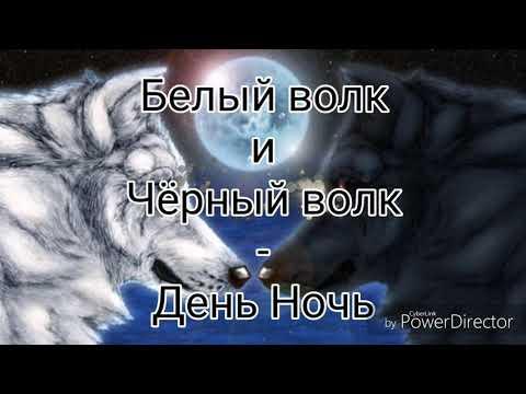 Белый волк и Чёрный волк - День Ночь