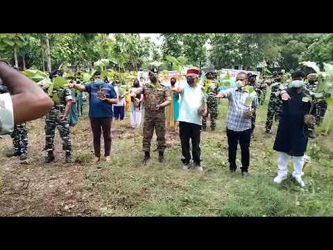 #VaranasiTimes केंद्रीय रिजर्व पुलिस बल द्वारा किया गया  वृहद वृक्षारोपण