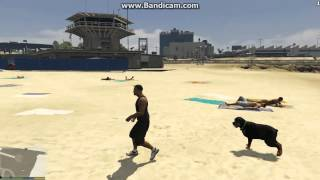 По Пляжу с Лохматой Собакой GTA-5