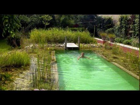 Conferenza presentazione libro biopiscine progettazione - Del taglia piscine prezzi ...
