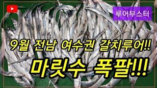 전남 여수권 9월!! 갈치루어 대박조황!!!