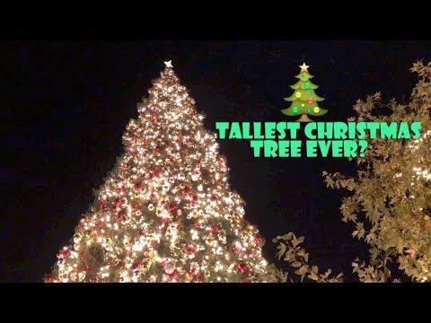 Tallest Christmas Tree Ever? 🎄 (WK 363.6) | Bratayley