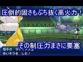 【ポケモンUSM】型破りな超火力!高耐久で動かしやすいメガデンリュウが強い【シングルレート】