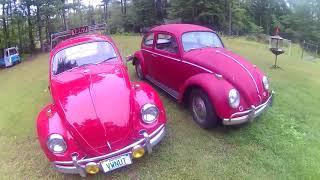 1966 vw bug project part 1(DAISY)