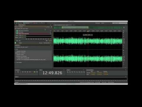 How to Edit Audio  Adobe Audition