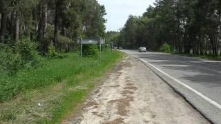 Снова страусы - видео-1(, 2013-07-05T07:48:46.000Z)