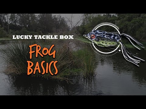 How To Catch BIG BASS On Frogs