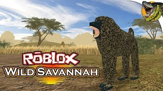 THE BABUINO!! | Wild Savannah (Roblox) Gameplay English