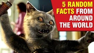5 Weird Random Facts From Around The World!