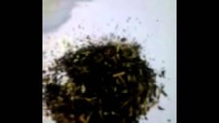 чай mabroc 1001 ночь. 100 грамм.  Чай в пакетиках..
