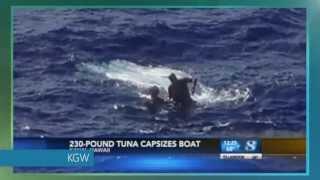 Giant tuna capsizes fisherman's boat