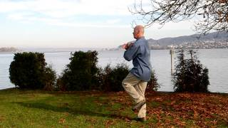 Alan Freebury, Tai Chi, short form