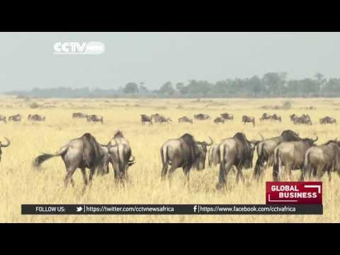 Kenya, Uganda and Rwanda set for joint tourism marketing