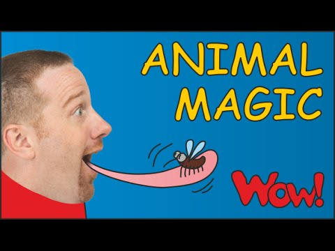 Animal Magic English Story for Children | Steve and Maggie for Kids in English funny ESL Stories
