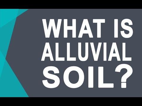 Alluvial Soil - Soils of India