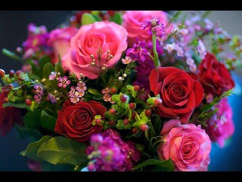 Самое красивое музыкальное поздравление с 8 марта. Михаил Шафутинский ЗА МИЛЫХ ДАМ ❤