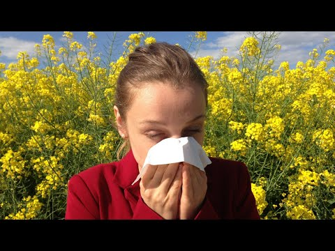Seasonal Allergies Top 3 Supplements
