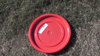 Very Inexpensive Dog Training Equipment