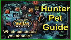 A Guide for Hunter Pets - World of Warcraft Classic