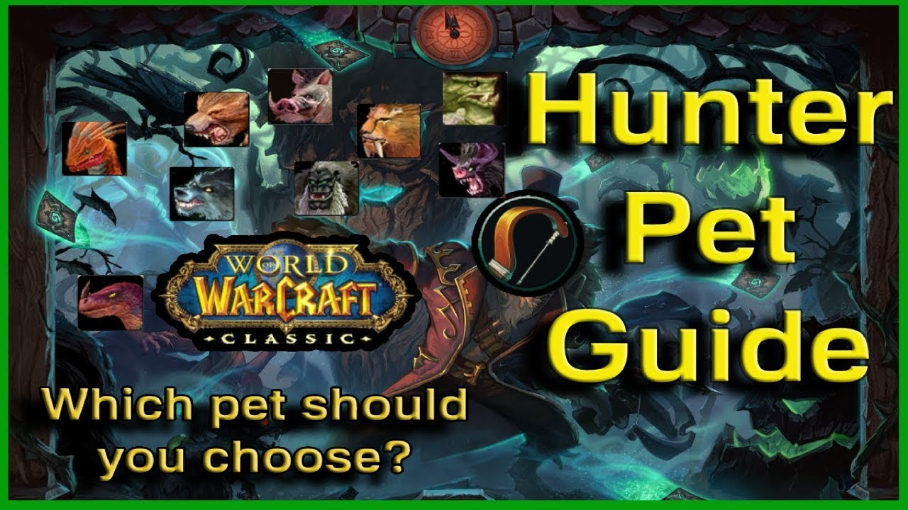 A Guide For Hunter Pets World Of Warcraft Classic Youtube