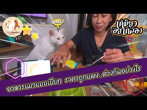 อาหารเปียกของน้องแมว มีหลายราคา อยากรู้ไหม ความแตกต่างเป็นอย่างไร เปิดซองแล้วมาลองดูกัน   ทาสแมวจร