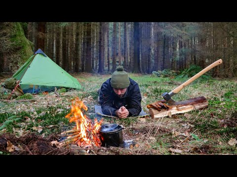 Solo Winter Bushcraft Camp Under An Ancient Oak Tree - Natural Fire Lighting , Campfire Cooking.
