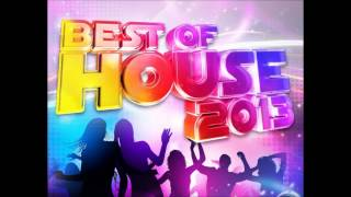 Best of House Music 2013 Mix.