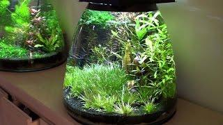 видео Помпа для воды ее виды и особенности применения, критерии выбора