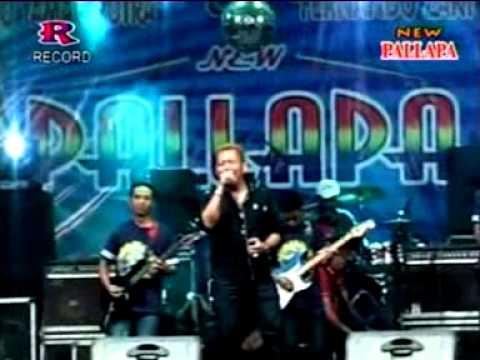 Yang Mr Bambang New Pallapa Live Sumberame Wringinanom Gresik 2015