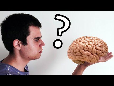 ¿Qué pasaría si usáramos el 100% de nuestro cerebro?
