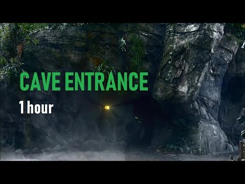 Heavy Thunderstorm By A Cave Entrance - 1 Hour Rain Sounds For Sleep, Study & Relaxation