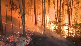 Arde Galicia