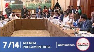 Sesión Comisión de Educación 7 (08/04/19)