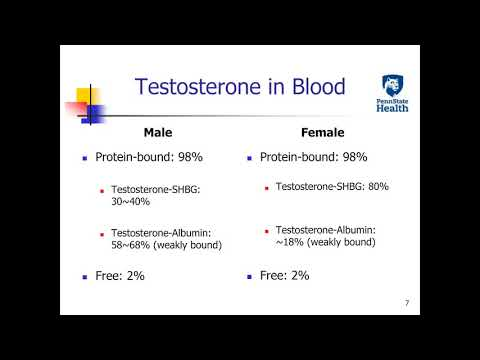 Yusheng Zhu -Testosterone Testing Total, Free, and Bioavailable