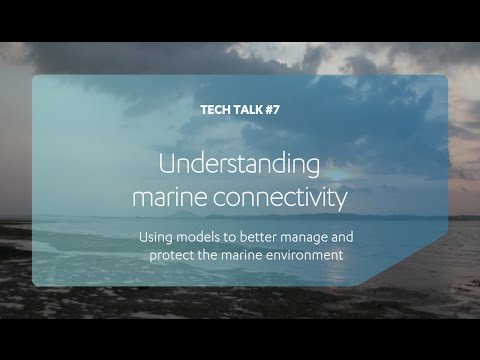 DHI Tech Talk #7 - Understanding marine connectivity