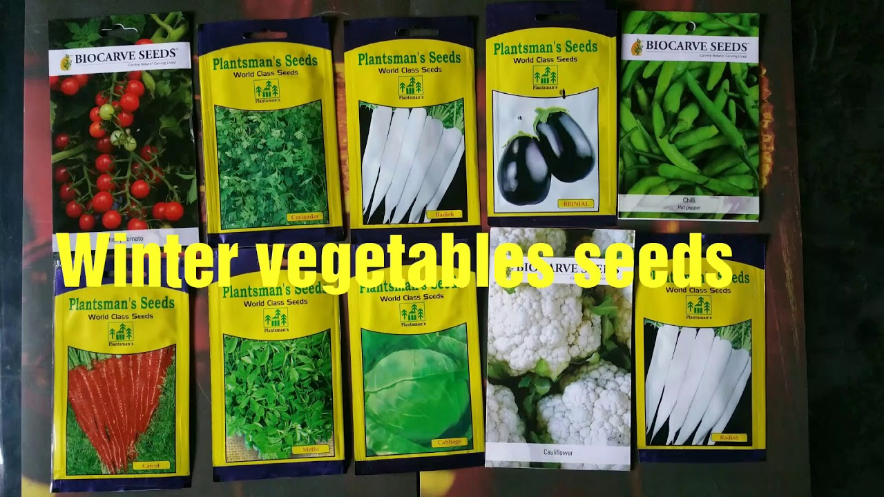 Buy Winter Vegetables Seeds Online Unboxing Kitchen Gardening Youtube