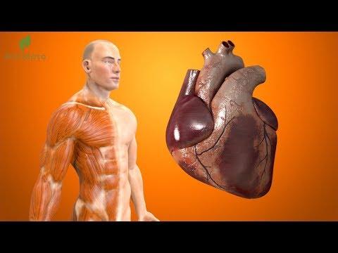 🔴-bebida-que-limpia-las-arterias-coronarias