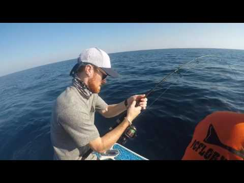 Panama City offshore fishing charter trip for amberjacks
