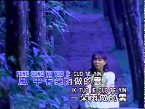Timi Zhuo                Feng Zhong You Duo Yu Zuo De Yun