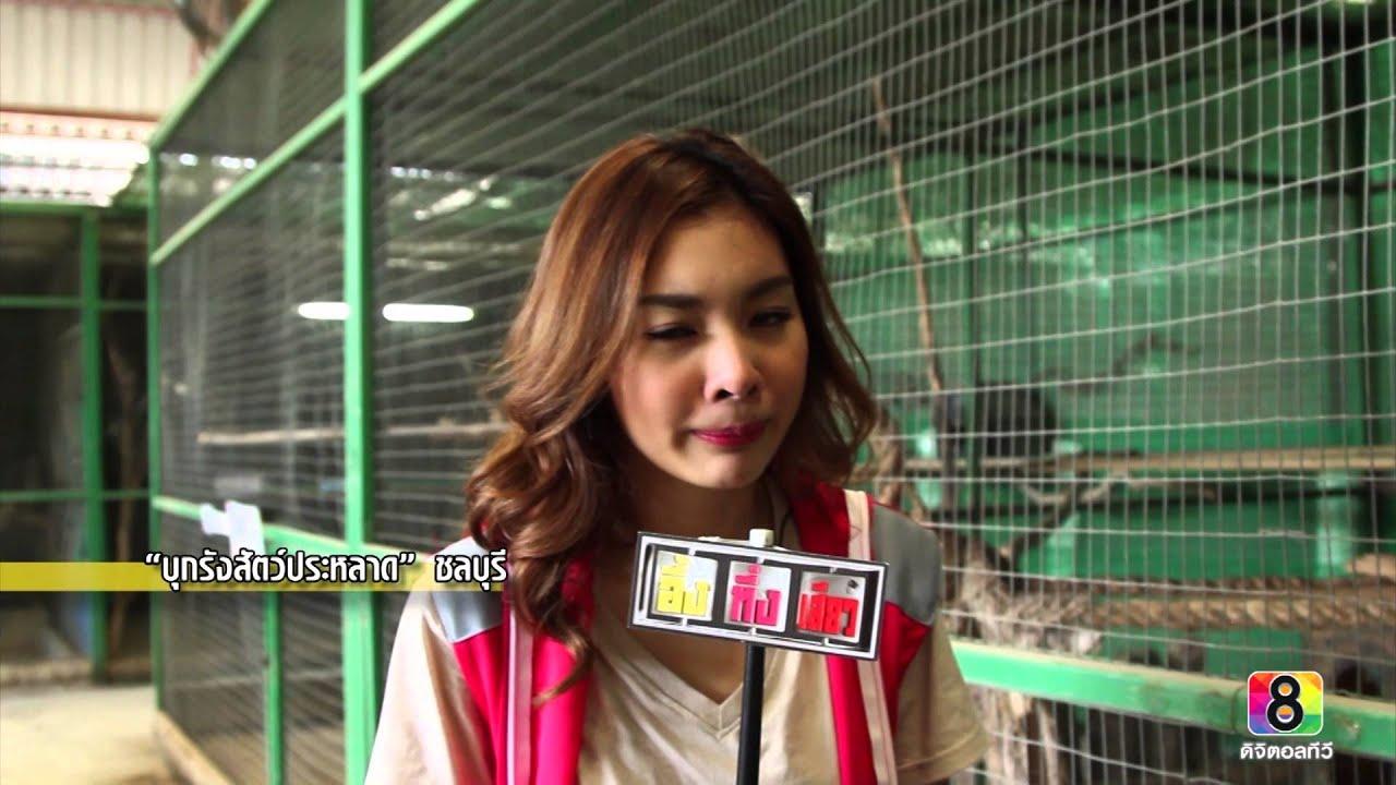 อึ้ง ทึ่ง เสียว : บุกรังสัตว์ประหลาด 3/4 #ช่อง8 #thaich8
